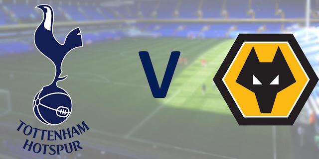مباشر مباراة توتنهام وولفرهامبتون فى البريميرليج