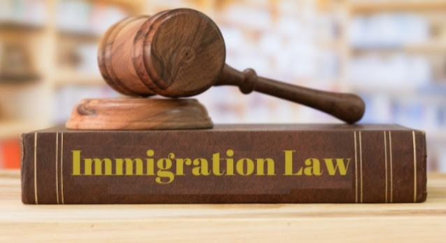 why businesses need immigration lawyers