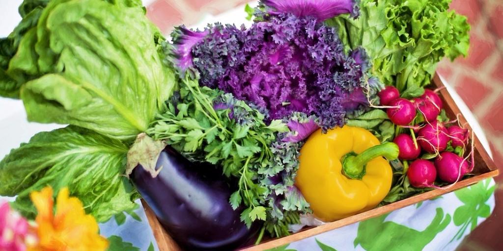 organic-farming-benefits