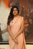 Eesha Rebba in beautiful peach saree at Darshakudu pre release ~  Exclusive Celebrities Galleries 073.JPG