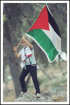 قصيدة   فلسطين هي الوجع