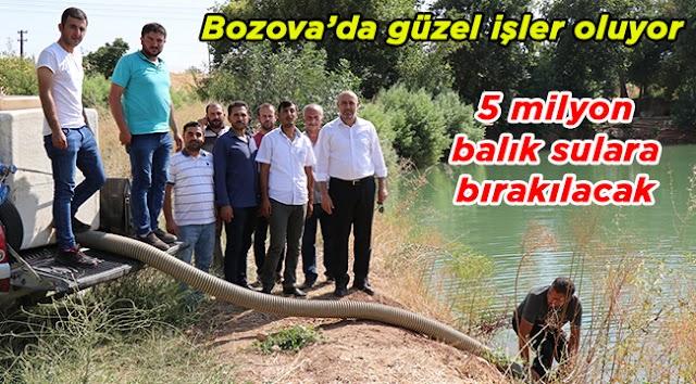 Bozova Fırat nehrine ve Küçük Göle balık bırakılıyor
