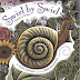 Swirl By Swirl Book Review and Snail Art