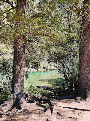 Itinerario 2 días en el El bolson, rio Azul camino al Paraiso