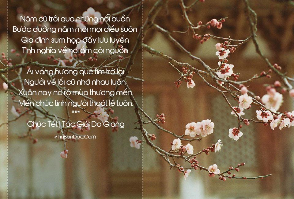 15+ Thơ Tết Hay, Thơ Chúc Tết & Chúc Xuân Cảm Xúc, Ý Nghĩa Năm Mới