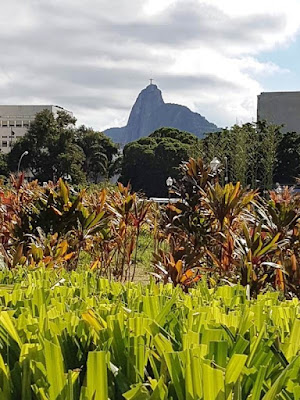 Distant view of Christ the Redeemer above flowerbeds