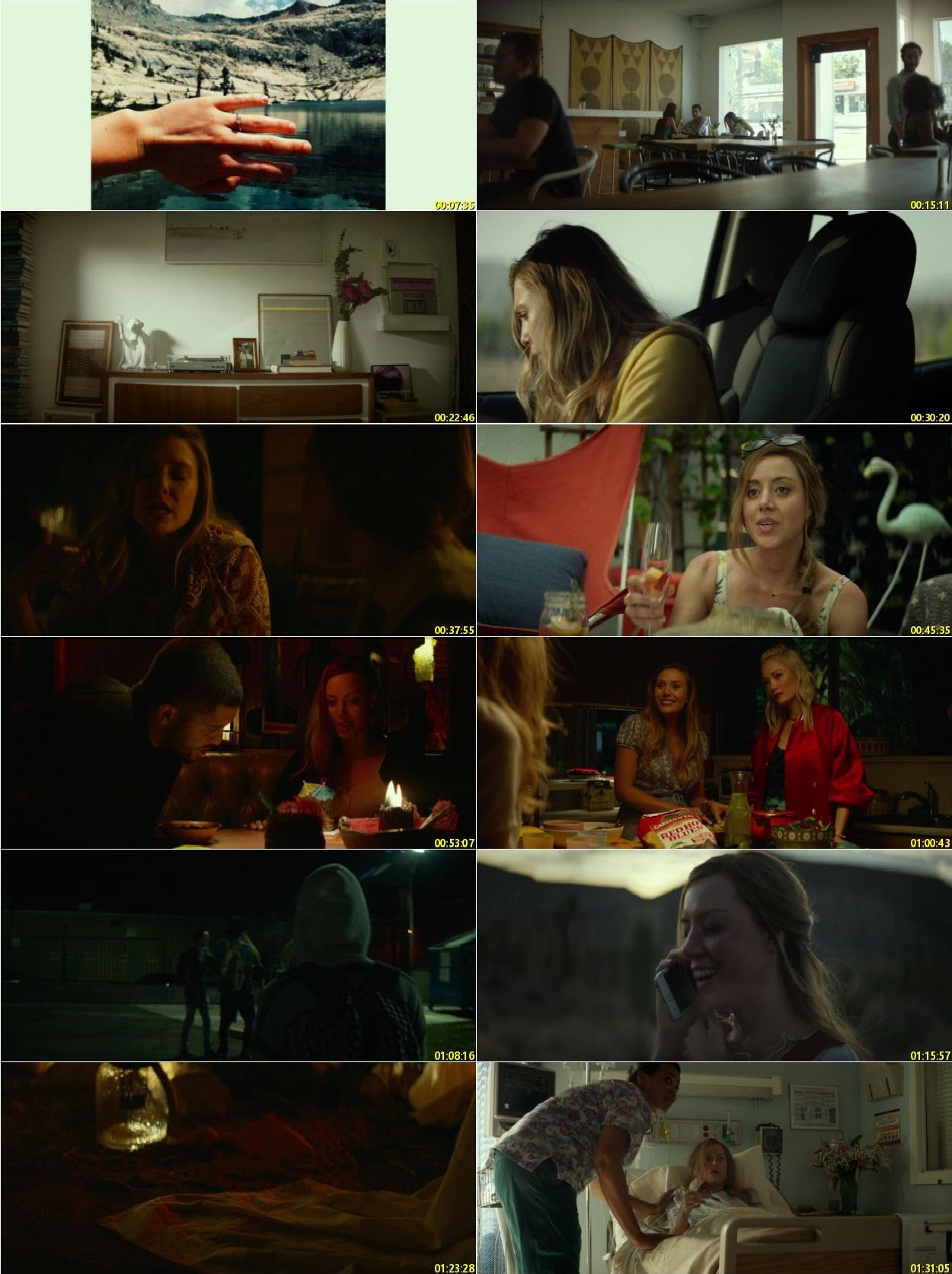 Screen Shot Of Ingrid Goes West 2017 In Hindi English Dual Audio Bluray
