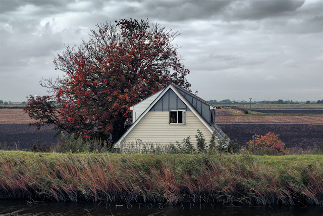 Ouse Washes atmospheric image of old house and fiery tree under stormy skies