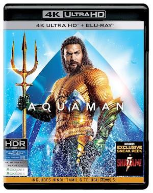 Download AQUAMAN Movie in Hindi Full HD 1080p Free Dual Audio