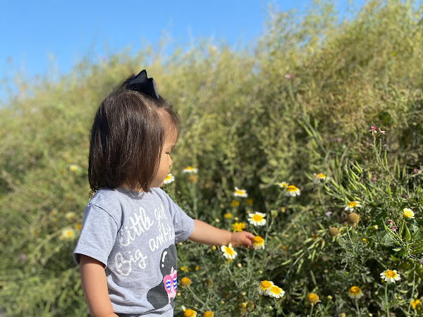Flower Fields, Hiking & Nature Walks