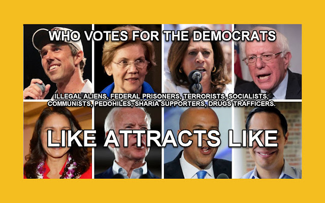 Memes: WHO VOTES FOR THE DEMOCRATS