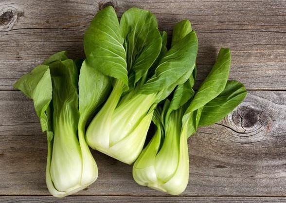 Sayuran segar pakan kenari