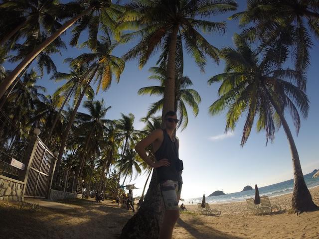 palmtrees philippines