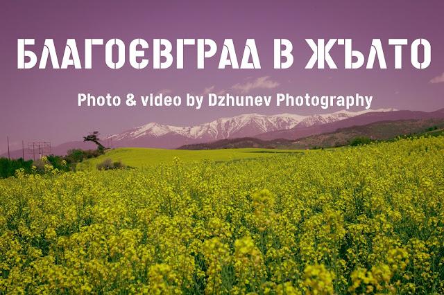 Blagoevgrad in Yellow 2021 - Благоевград в жълта премяна 2021