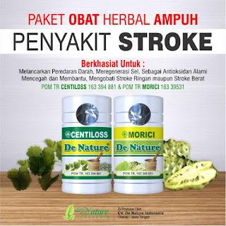 menyembuhkan stroke dengan herbal, mengatasi stroke dengan herbal, obat herbal stroke