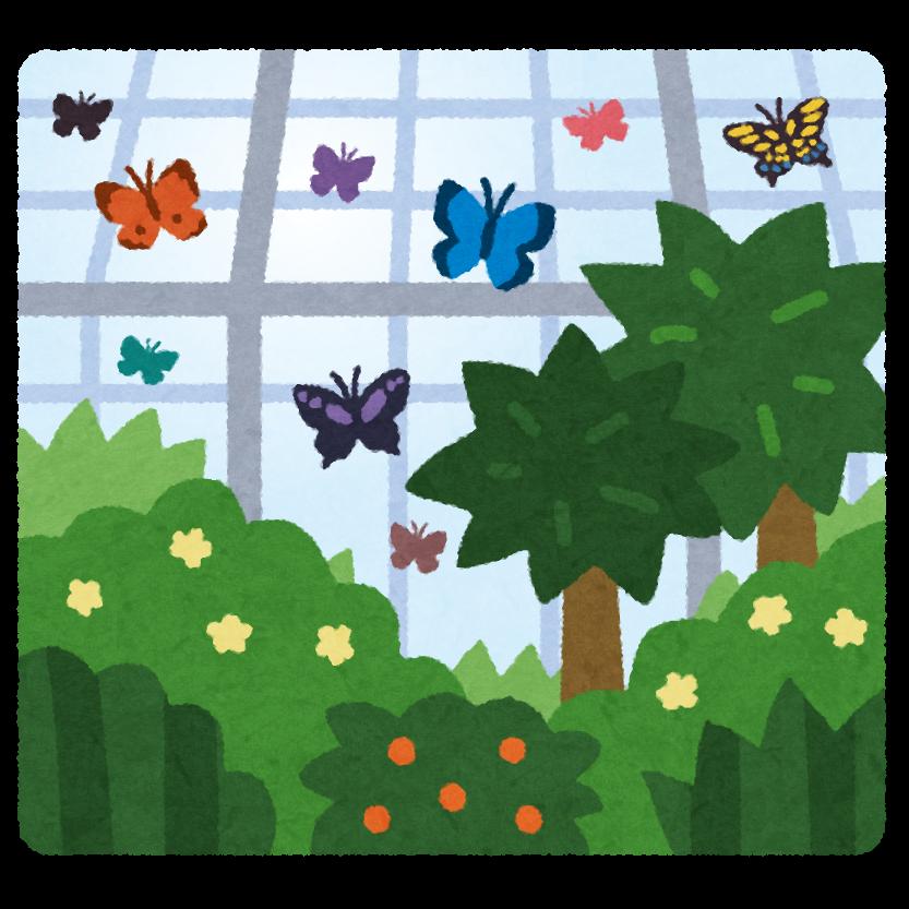 温室植物園のイラスト 蝶 かわいいフリー素材集 いらすとや