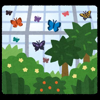 温室植物園のイラスト(蝶)