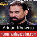 https://humaliwalaazadar.blogspot.com/2019/09/adnan-khawaja-nohay-2020.html