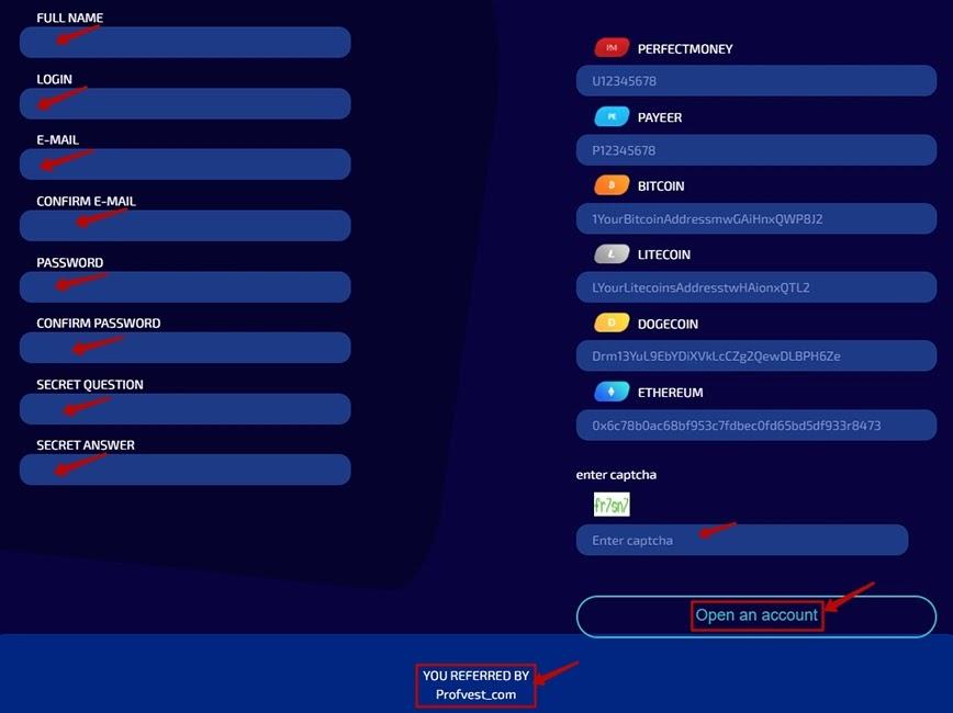 Регистрация в DogeBox LTD 2