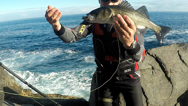 ROBALIZA - NEW caña spinning FISTERRA de spanish Lures
