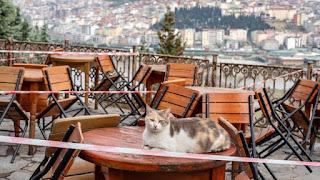 وزارة الداخلية التركية تصدر تعميماً حول موعد عمل المسابح والمقاهي وغيرها
