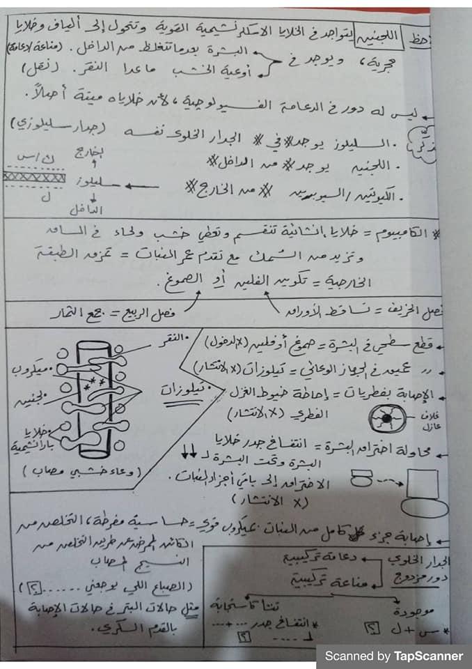 مراجعة المناعة أحياء للثالث الثانوي مستر محرم 2