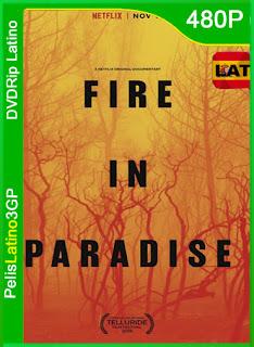 Fire in Paradise (Paradise en llamas) (2019) | DVDRip Latino HD GoogleDrive 1 Link