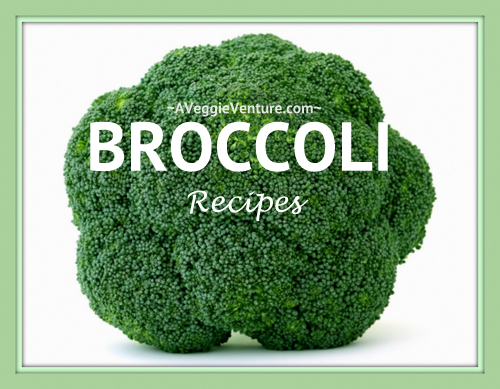 Tired of the same-old steamed broccoli? Find new inspiration in this collection of seasonal Broccoli Recipes ♥ AVeggieVenture.com, savory to sweet, salads to sides, soups to supper, simple to special. Many Weight Watchers, vegan, gluten-free, low-carb, paleo, whole30 recipes.