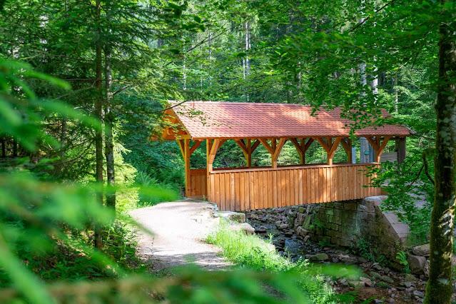 Premiumwanderweg Murgleiter | Etappe 4 von Schönmünzach nach Baiersbronn | Wandern nördlicher Schwarzwald 19