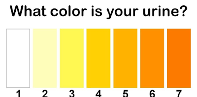 brow urine color means what