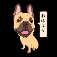 french bulldog mini 01