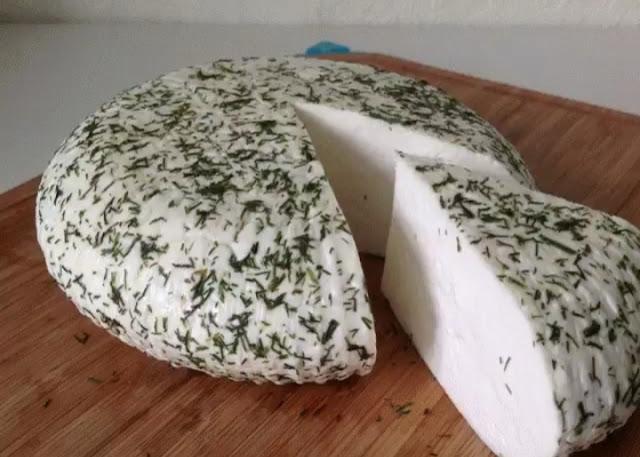 Готовим полезный сыр с укропом картинка