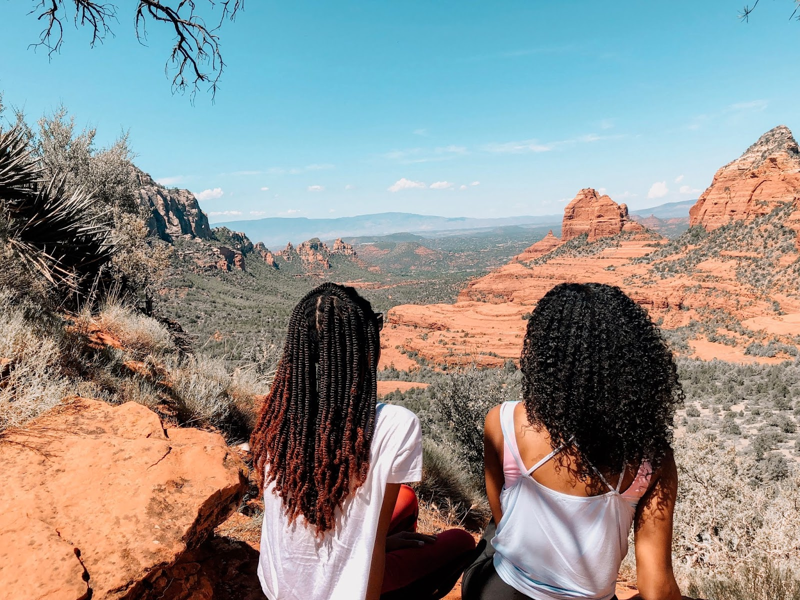 Traveling with your best friend in sedona arizona jeep tours