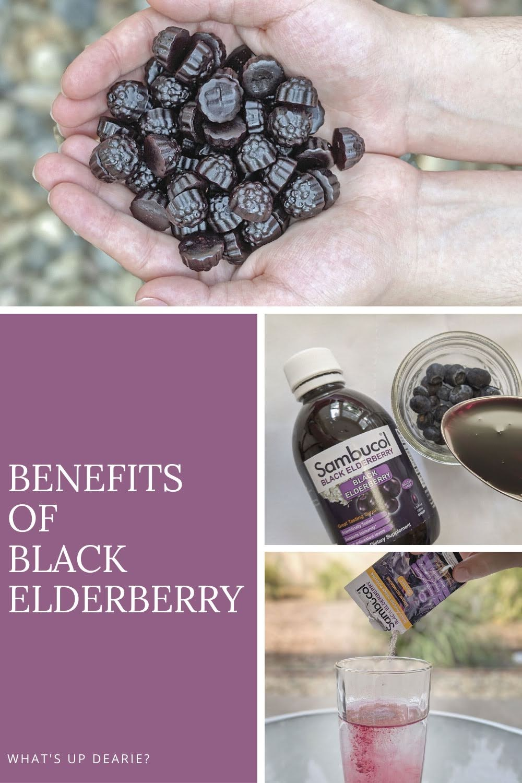 Benefits of Black Elderberry