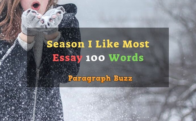 Essay on the Season I Like Most 100 Words