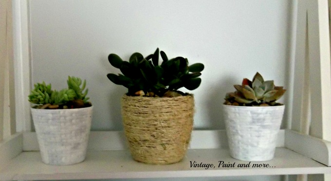 Succulents in Upcycled Dollar Store Pots - DIY flower pots, painting flower pots, using succulents to decorate with, repotting succulents, how to decorate with succulents