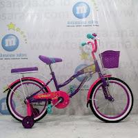Sepeda City Bike RMB
