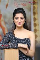 Telugu Actress Richa Panai Stills in One Shoulder Floral Long Dress at Rakshaka Bhatudu Movie Interview  0234.JPG