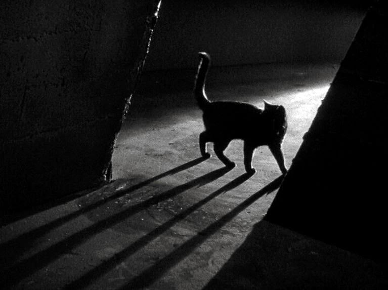 Poster do filme Terror Dentro da Noite
