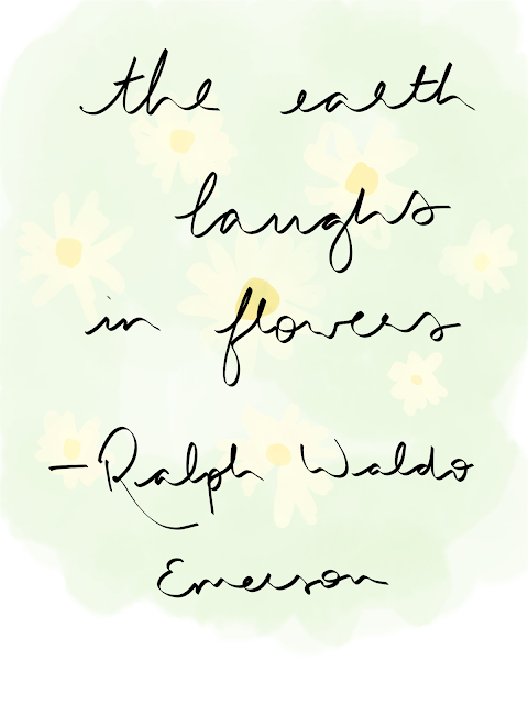 """the earth laughs in flowers"" quote on a background of a digital drawing of daisies"