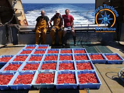 IMG 20200528 WA0004 - Discriminación de la Dirección General de Pesca Sostenible del Ministerio de Agricultura, Pesca y Alimentación