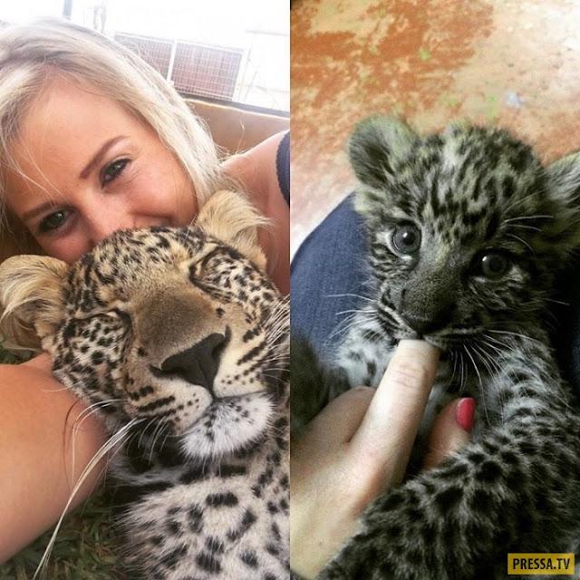 Девушка спасла котенка гепарда, сейчас он вырос и стал ее лучшим другом
