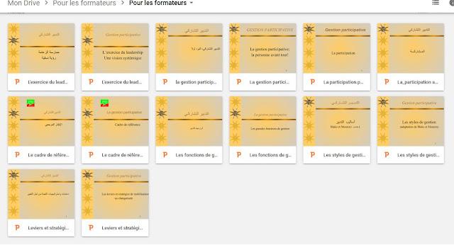 التدبير التشاركي، حسب منظور مشروع بروكاديم PROCADEM