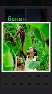 655 слов в лесу мужчина и женщина тянется сорвать банан 4 уровень