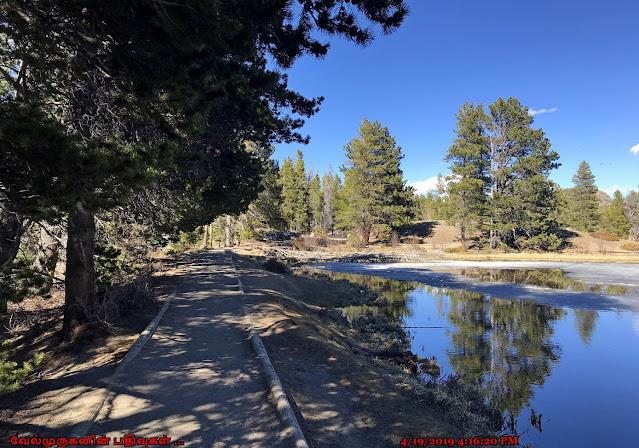 Sprague Lake Loop Hike