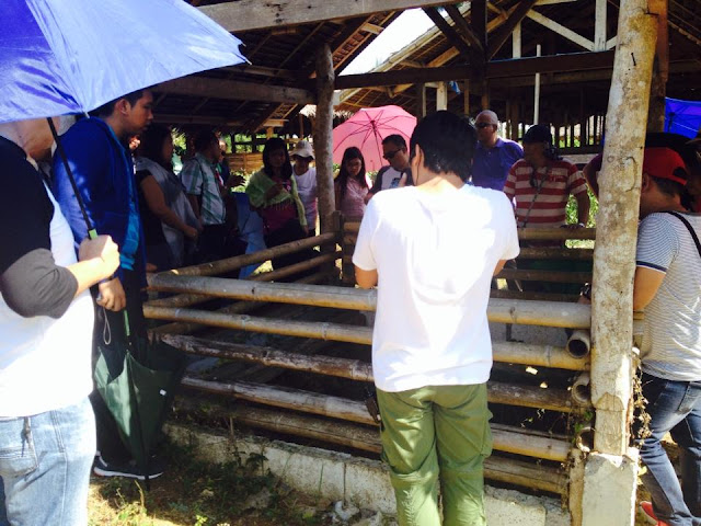 2015 summer outing for Laguna Technopark Environmental Management Group Tripartite Monitoring Team in Cebu and Bohol Central Visayas Philippines