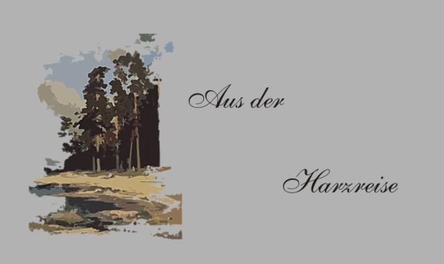 Waldstück Harzreise