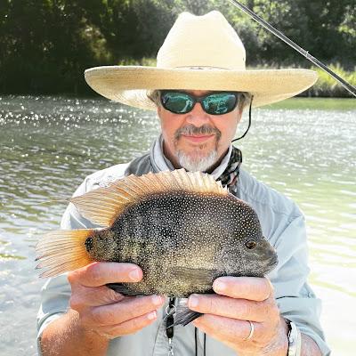 Year of the Rio, Rio Grande Cichlid, Fly Fishing for Rio Grande Cichlids, Fly Fishing Texas, Texas Fly Fishing