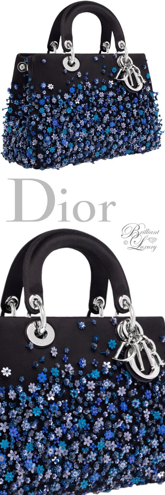 Brilliant Luxury ♦ Dior embroidered Lady Dior bag
