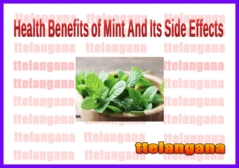 Health Benefits of Mint And Its Side Effects